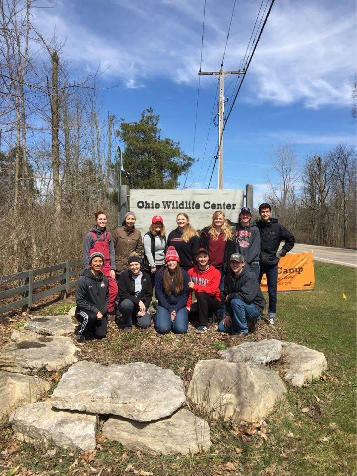 HAI Club volunteering at Ohio Wildlife Center